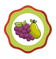 Sticker grape and pear fruits icon vector
