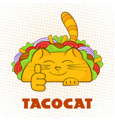 Taco cat cheerful character mexican fast food taco vector