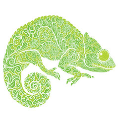 Zentangle stylized chameleon vector