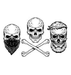 a skull and crossbones vector image
