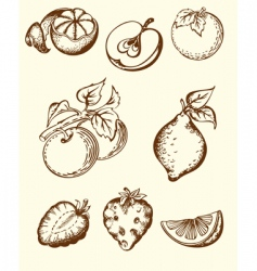 vintage fruit icons vector image vector image
