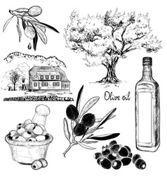Black and White Hand Drawn Set of Olive Products vector image vector image
