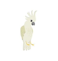 beige exotic parrot cockatoo with crest isolated vector image