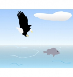 bird of prey fishing vector image