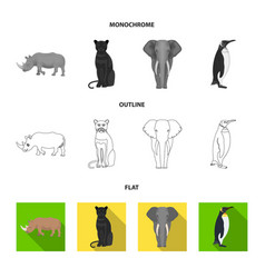black rhinoceros panther wild cat african animal vector image