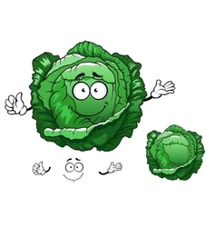 Cartoon crunchy cabbage vegetable character vector