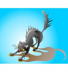 frightened cat vector image