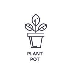 plant pot line icon outline sign linear symbol vector image
