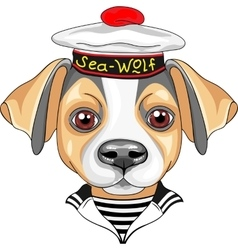 cartoon dog Jack Russell Terrier sailor vector image
