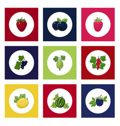 Round berry icons on colorful background vector