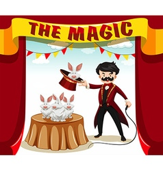 Magic show with magician and rabbits vector image vector image