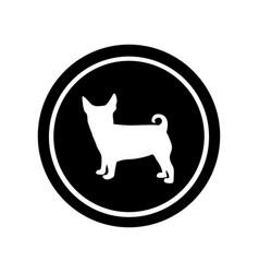 circular frame with figure small dog animal vector image
