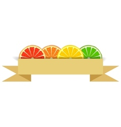 Citrus slices with paper banner vector image