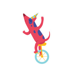 Cute dog in party hat riding unicycle funny vector
