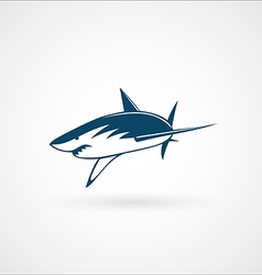shark attack logo sign vector image