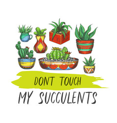 Sign with cactus or banner with succulent plants vector