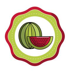 Stiker delicious watermelon fruit icon vector