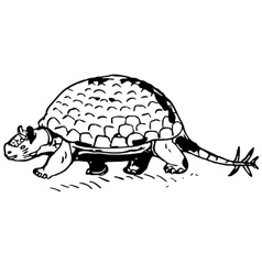 prehistorical turtle vector image vector image