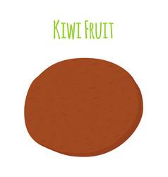 tropical fruit exotic kiwi cartoon flat style vector image vector image