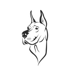 Dog head great dane or german mastiff or danish vector