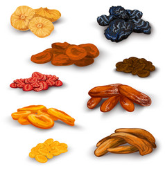 Dried fruit icons set vector image
