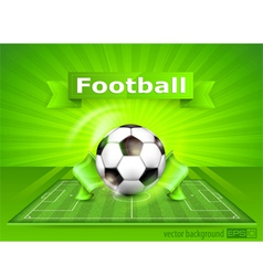 Green playing field ball vector