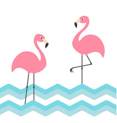 Pink flamingo family set blue sea ocean water vector