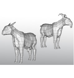 Polygonal goats vector