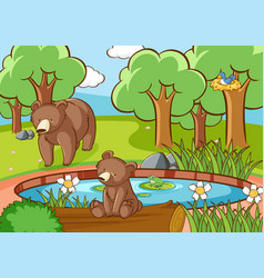 scene with grizzly bears in forest vector image