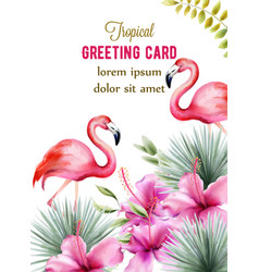 tropical greeting card with pink hibiscus and vector image