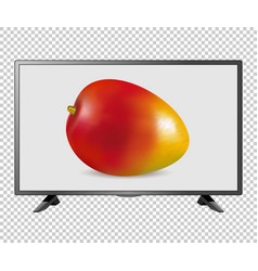 tv led lcd screen vector image