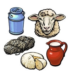 head of sheep and production products vector image
