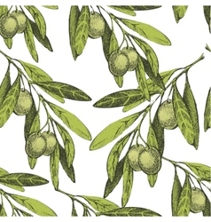 seamless pattern with hand drawn olives vector image vector image