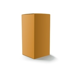 Blank yellow box isolated vector image vector image
