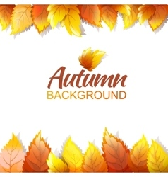 Autumn Background Template vector image