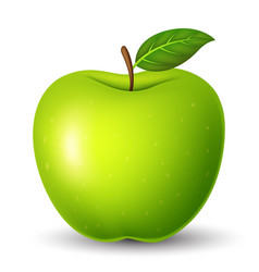 green apple with green leaf isolated on white vector image
