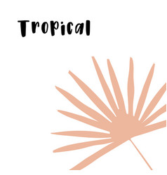 isolated doodle with tropical vector image