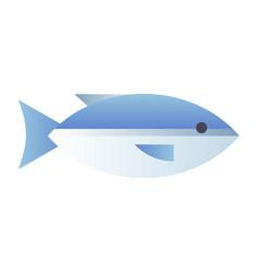 Salmon gradient vector