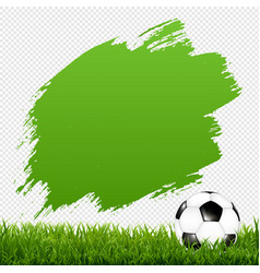 soccer ball with blot and grass transparent vector image