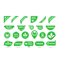stickers icons for vegan tags labels vector image