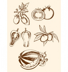set of vintage vegetable icons vector image vector image