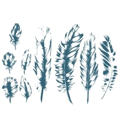 Vintage Feather blue set Hand-drawn vector image