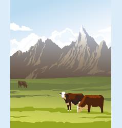 cows in a meadow vector image vector image