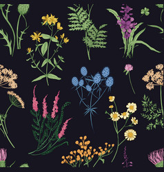floral seamless pattern with colorful forest herbs vector image vector image
