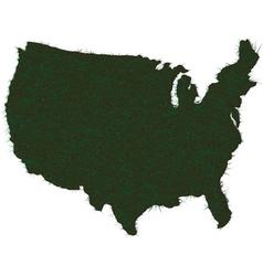 AMERICA MAP GRASS vector image