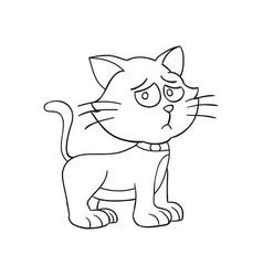 animal cartoon cat vector image
