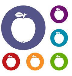 black apple icons set vector image