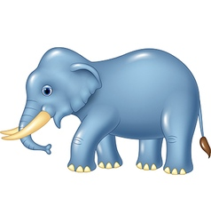 Cute elephant mascot isolated on white background vector
