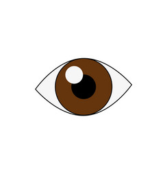 Human eye isolated vector