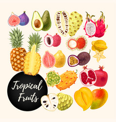 Set of tropical fruits vector